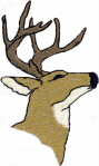 Realistic Deer Head Free Embroidery Design