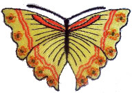 Realistic Butterfly Free Embroidery Design