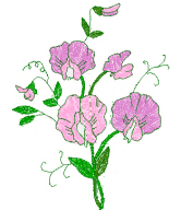Sweet Pea Floral Free Embroidery Design