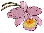 Orchid Floral Free Embroidery Design