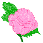 Lovely Rose Blossom Free Embroidery Design