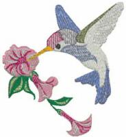 Broad Billed Hummingbird Free Embroidery Design